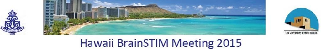 Hawaii BrainSTIM Meeting 2015